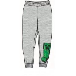 Child Long Pants Minecraft Grey (43787G)